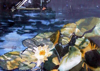 The Water Lily by Bill Puryear